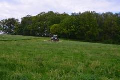 Traktor mit Mähwerk bei der Arbeit